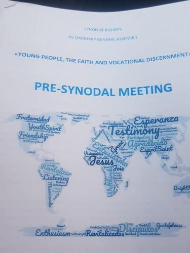 Documento Reunião Pré-Sinodal 2018bal (2)
